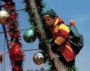 Подарок на Рождество / Jingle All the Way (Арнольд Шварценеггер, 1996) 003032521283076