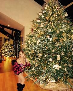 Mariah Carey - Sexy Christmas Pic (12/19/16)