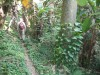 Hiking 獅子回頭 - 頁 3 4d2602523781686