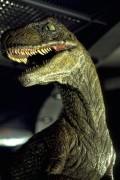 Парк Юрского периода / Jurassic Park (Сэм Нил, Джефф Голдблюм, Лора Дерн, 1993)  F50aea525637482