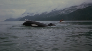Free Willy (franchise) - Wikipedia