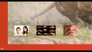 Знакомьтесь, Ваш Мозг + Совершенствуйте ваш мозг (2016) Видеокурсы