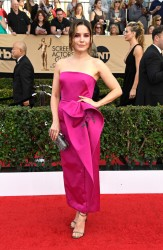 Sophia Bush - 2017 SAG Awards 1/29/17