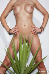 http://thumbnails117.imagebam.com/53212/4a8532532111631.jpg