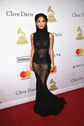 Nicole Scherzinger - 2017 Clive Davis Pre-GRAMMY Gala And Salute to Industry Icons in Beverly Hills 2/11/17