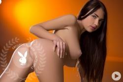 http://thumbnails117.imagebam.com/53652/598223536512095.jpg