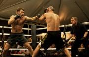 Воин / Warrior (Джоэл Эдгертон, Том Харди, 2011) 469cb7537110241