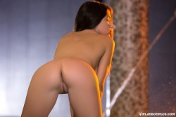 http://thumbnails117.imagebam.com/53837/8e0c5c538361705.jpg