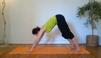 Санкальпа йога для пищеварения (2014) Видеокурс