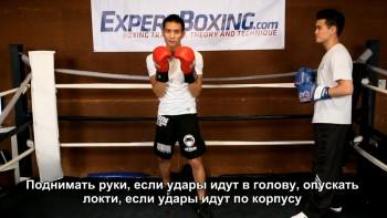 Как Боксировать за 10 Дней (2016) Видеокурс