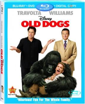 Daddy Sitter (2009) Full Blu-Ray 30Gb AVC ITA DTS 5.1 ENG DTS-HD MA 5.1